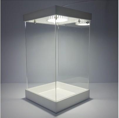 Terrarium White